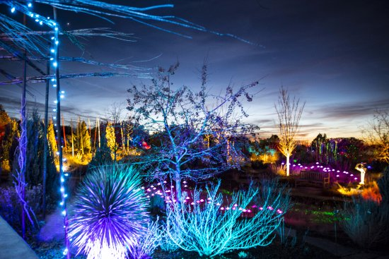 Santa Fe Botanical Garden: GLOW Winter Lights Event