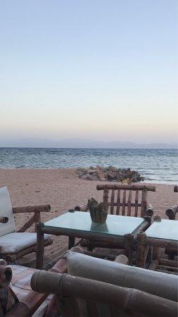 Coral Coast Hotel: photo0.jpg