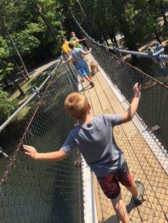 Pickett CCC Memorial State Park: Rope bridge