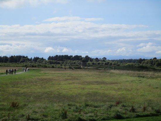 Culloden Battlefield: The battlefield