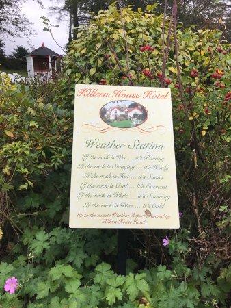 Killeen House Hotel & Rozzers Restaurant: Whimsical garden sign