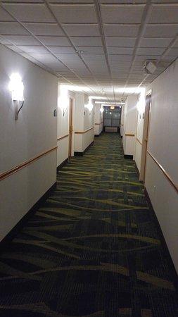 Lynn Haven, FL: hallway