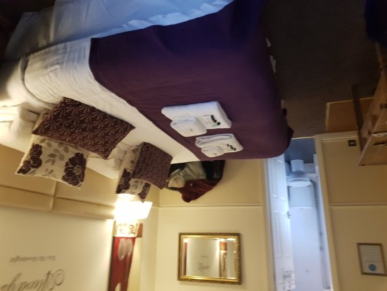 Chester House Guest House: 20171003_165813_large.jpg