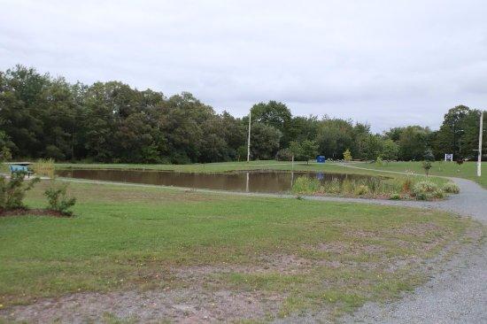 Westville, Canadá: A pond