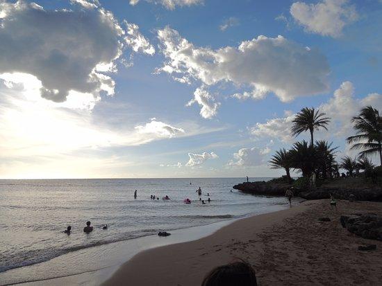 Laniakea Beach: 人が少ないビーチです