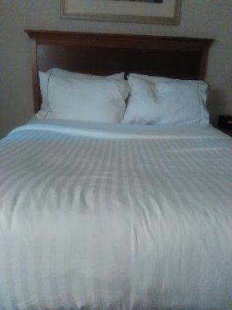 Holiday Inn Express & Suites Tilton : Bed