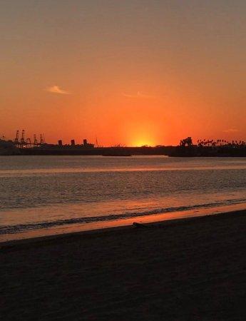 S Pine Ave Long Beach Ca  Usa
