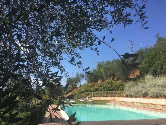 Hotel Pool Picture Of Borgo Grondaie Siena Tripadvisor