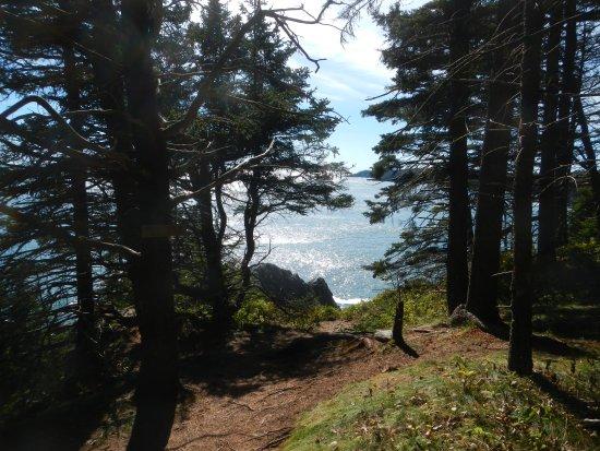 Machias, ME: End of Trail to Cutler Cliff
