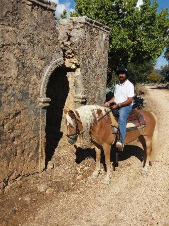 Bavarian Horse Riding Stables: Damaged village monastery