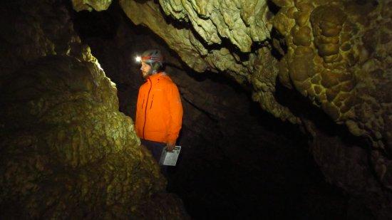 Horne Lake Caves Provincial Park: IMG_2515_large.jpg