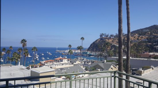 The Avalon Hotel: View from the room's patio