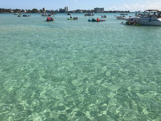 North Miami Beach, Floride : The clear water of the sandbar.  Great for swimming.