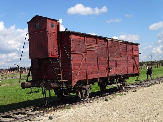 Auschwitz And Salt Mine Private Tours