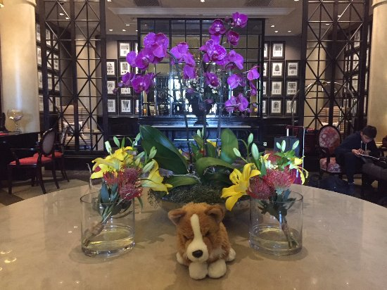 Cape Royale Luxury Hotel: A flora display in the lobby