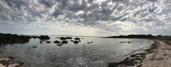 French Island Foto