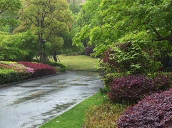 Holiday inn express putuo shanghai cina review hotel for Gardening express reviews