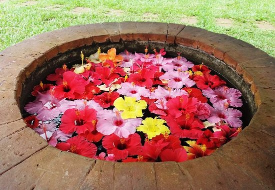 Davao City, Philippines: The well at Lola's Garden.