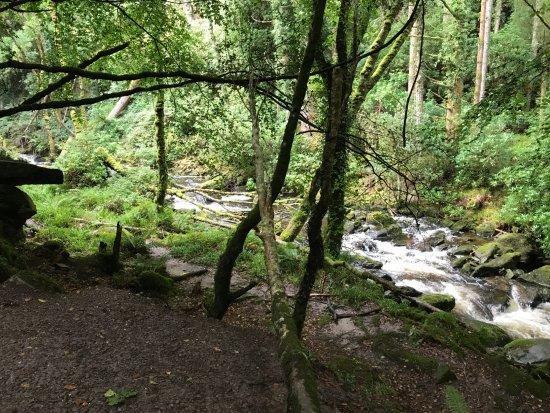 Torc Waterfall: steeper rapids. getting closer