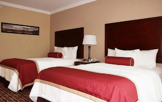 Miccosukee Resort & Gaming: 310613 Guest Room