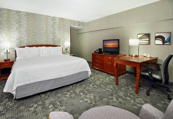 Lyndhurst, Нью-Джерси: King Guest Room