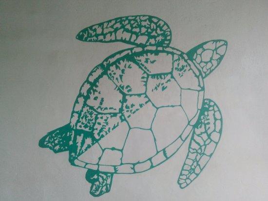 Turtle Eco Beach: turtle tag