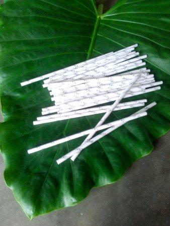 Turtle Eco Beach: Paper Eco drinking Straw