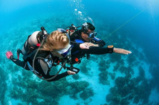 4-day diving course for beginners in...