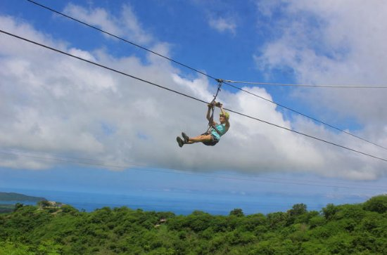 Zipline Canopy with Ocean View
