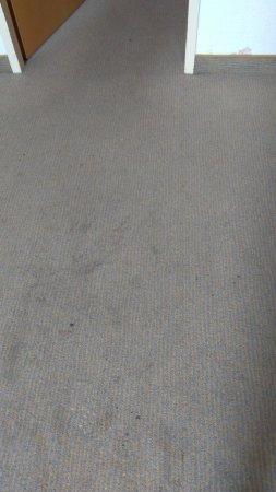 Ruesselsheim, Germany: More disgusting carpet