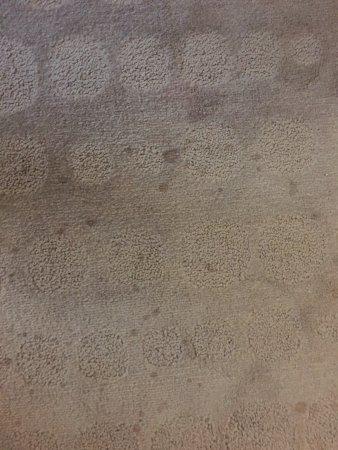 Pullman Melbourne Albert Park: Carpet