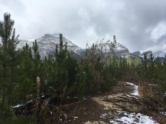 Foto de Stanley Glacier Hike