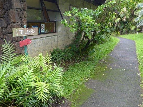 Kaneohe, Hawái: 釣り場への矢印