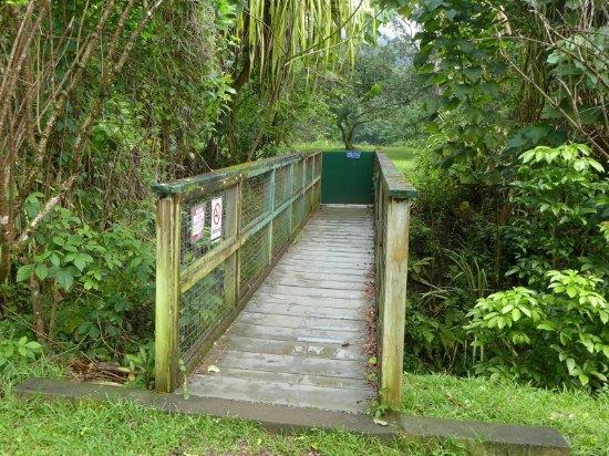 Kaneohe, Hawái: 木橋・・・これを渡るともうすぐ