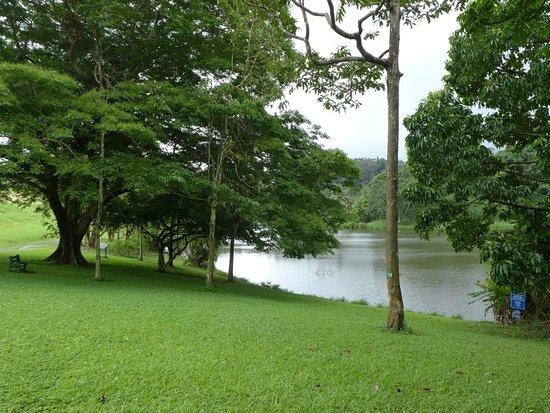 Kaneohe, ฮาวาย: ワオケレ池