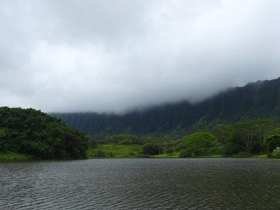 Kaneohe, ฮาวาย: いい景色!