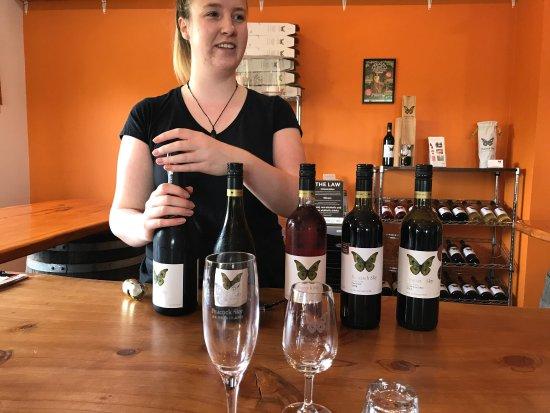 Auckland Fine Wine & Food Tours: photo2.jpg