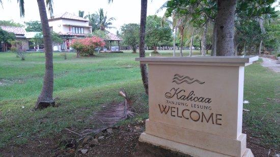 Kalicaa Villa Resort : jalan menuju villa