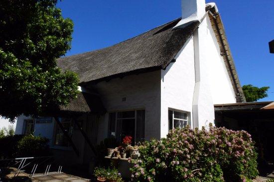 Saint Francis Bay, South Africa: Rumbling Rose