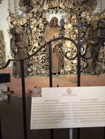 Museum and Crypt of Capuchins: photo1.jpg