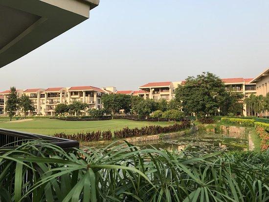Greater Noida, อินเดีย: View from the garden 🌴💚