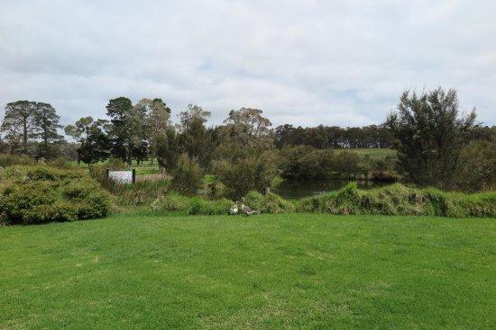 Cowaramup, أستراليا: Outdoor lawn