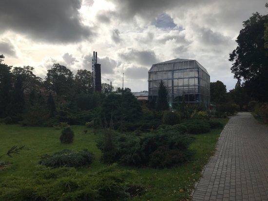 Botanical Garden: Понравилось, очень красиво, много растений и прекрасный пруд