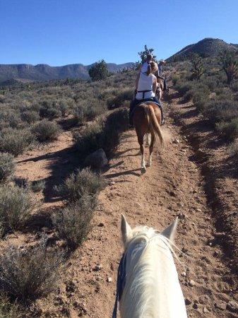 Meadview, AZ: photo7.jpg