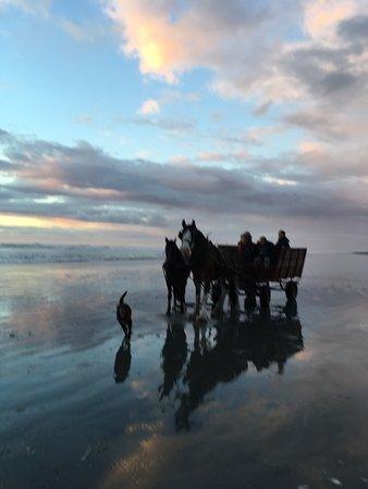 Barrytown, New Zealand: photo1.jpg