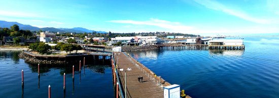 Port Angeles, WA: View from the tower