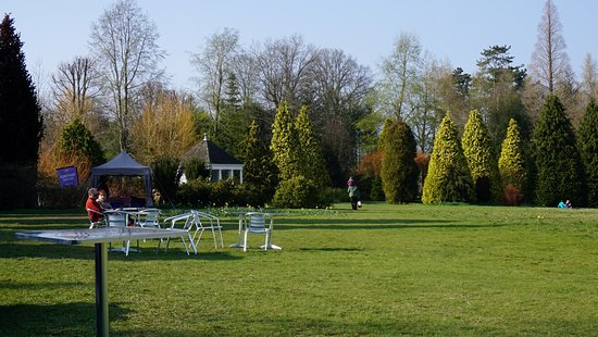 Haywards Heath, UK: Nymans Gardens & House (few Photos), England