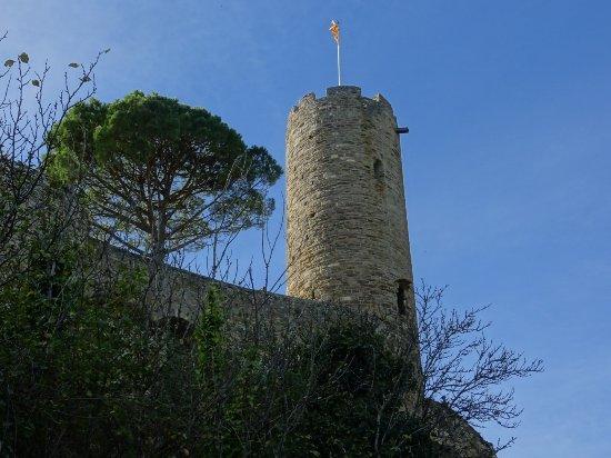 Turenne, França: DSC04077_large.jpg