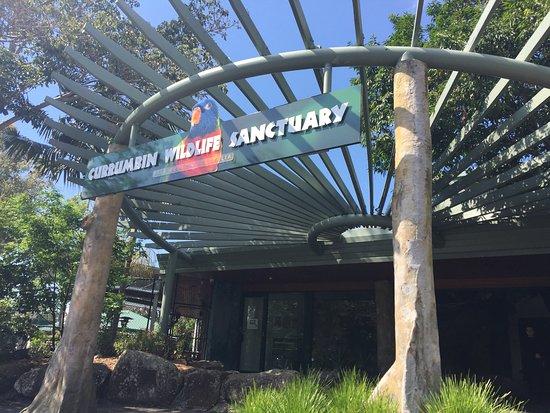 Куррумбин, Австралия: photo9.jpg