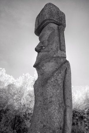 Moai di Vitorchiano, foto all'Infrarosso
